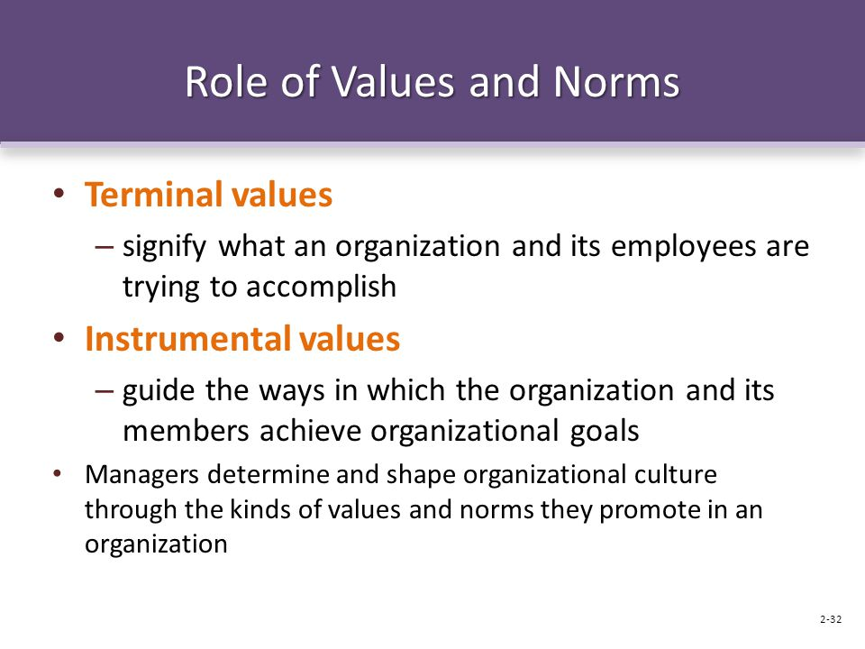 Role of Values and Norms Terminal values – signify what an organization and its employees are trying to accomplish Instrumental values – guide the ways in which the organization and its members achieve organizational goals Managers determine and shape organizational culture through the kinds of values and norms they promote in an organization 2-32