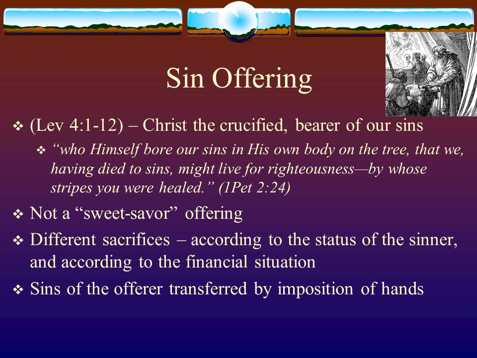 Sin Offering  High Priest – offers a young bull (Lev 4:3)  All the fat is removed and burned on the Altar  All the skin and meat is burned outside of the camp  Sin has no place is God's presence  Christ was crucified outside of the Holy City  For the bodies of those animals, whose blood is brought into the sanctuary by the high priest for sin, are burned outside the camp.