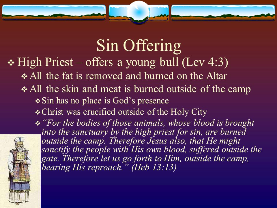 Sin Offering  High Priest – offers a young bull (Lev 4:3)  All the fat is removed and burned on the Altar  All the skin and meat is burned outside
