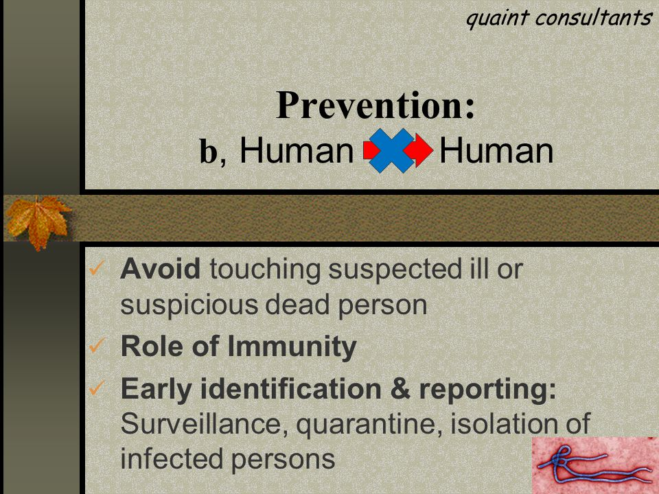 Prevention: b, Human Human Avoid touching suspected ill or suspicious dead person Role of Immunity Early identification & reporting: Surveillance, quarantine, isolation of infected persons quaint consultants