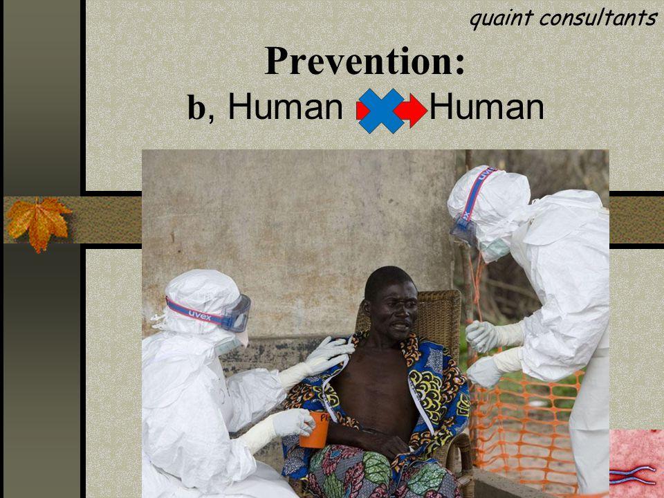 Prevention: b, Human Human quaint consultants