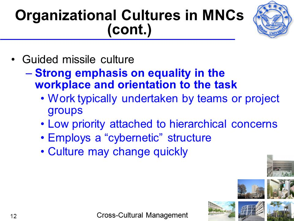 Cross-Cultural Management 12 Organizational Cultures in MNCs (cont.) Guided missile culture –Strong emphasis on equality in the workplace and orientat