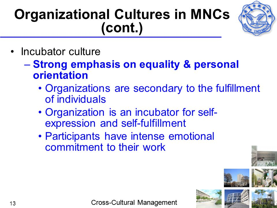 Cross-Cultural Management 13 Organizational Cultures in MNCs (cont.) Incubator culture –Strong emphasis on equality & personal orientation Organizatio