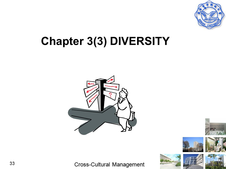 Cross-Cultural Management 33 Chapter 3(3) DIVERSITY