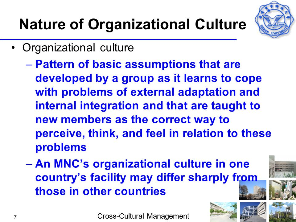 Cross-Cultural Management 7 Nature of Organizational Culture Organizational culture –Pattern of basic assumptions that are developed by a group as it
