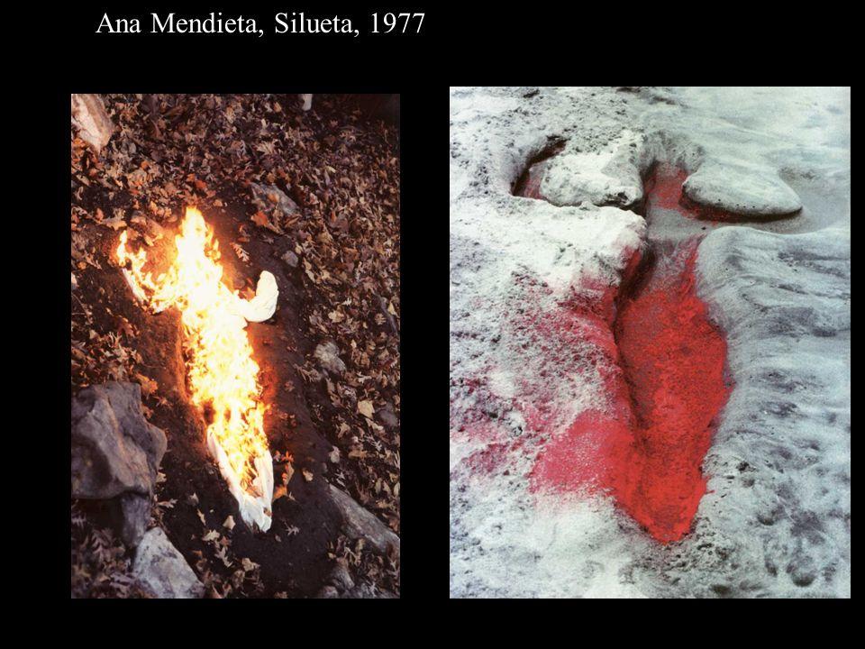 AM Silueta 77 fire; AM Silhueta 78 pigment Ana Mendieta, Silueta, 1977