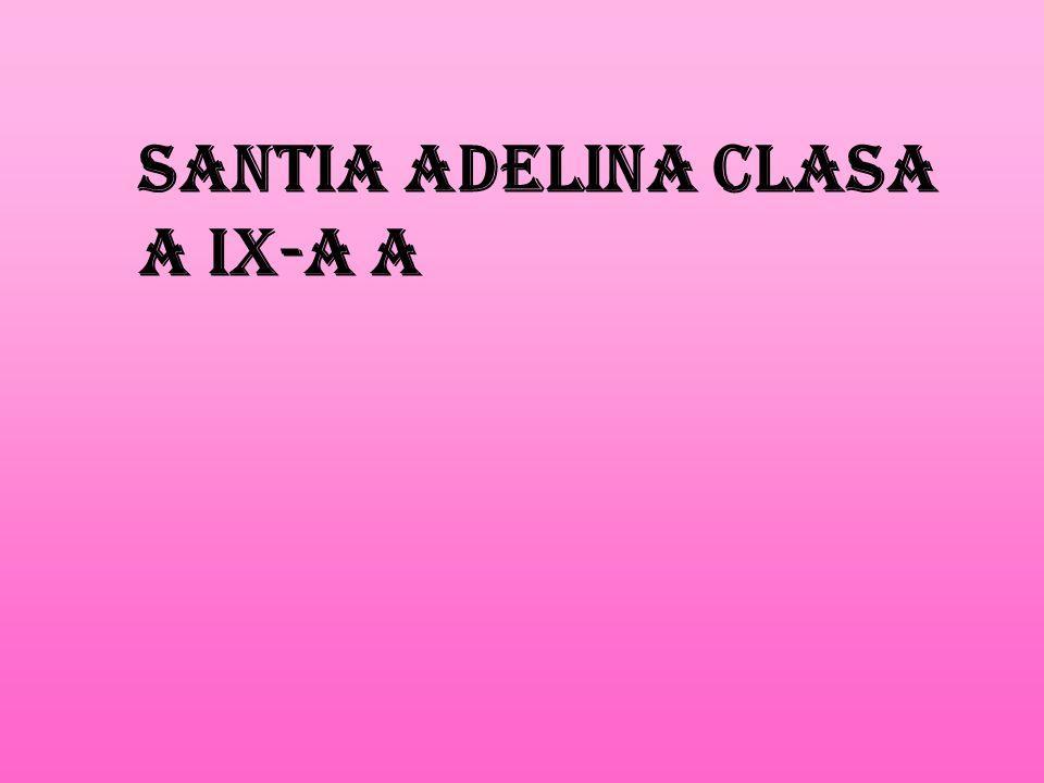 Santia Adelina clasa a IX-a A