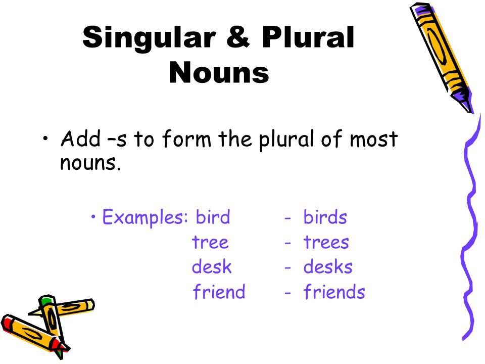 Singular & Plural Nouns Add –s to form the plural of most nouns. Examples: bird- birds tree- trees desk- desks friend- friends
