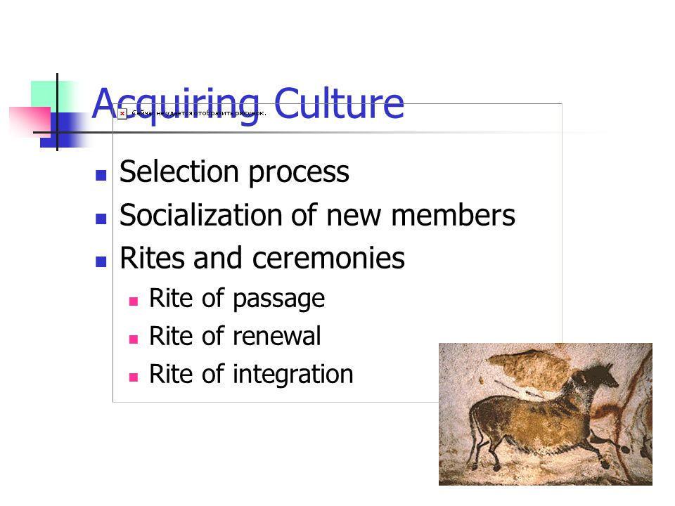 Acquiring Culture Selection process Socialization of new members Rites and ceremonies Rite of passage Rite of renewal Rite of integration