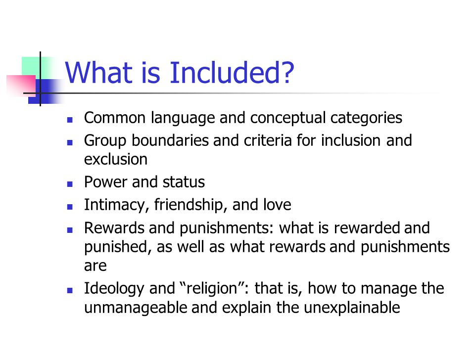 What is Included? Common language and conceptual categories Group boundaries and criteria for inclusion and exclusion Power and status Intimacy, frien