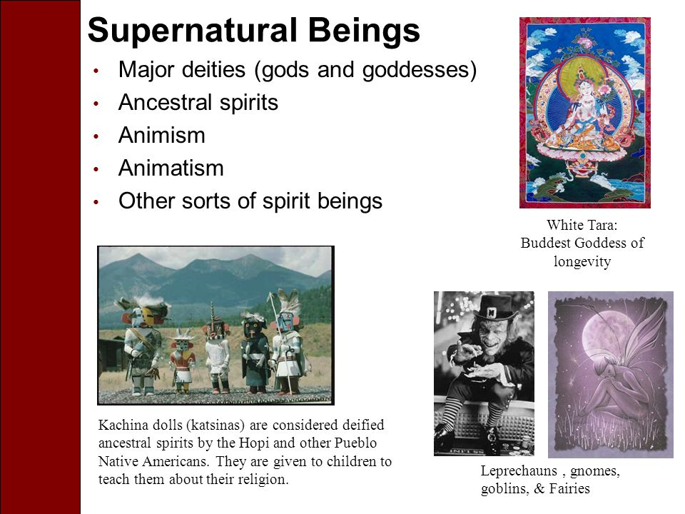 Animism Animism is the belief that nonhuman entities, such as plants, animals, and even rocks can have a soul.