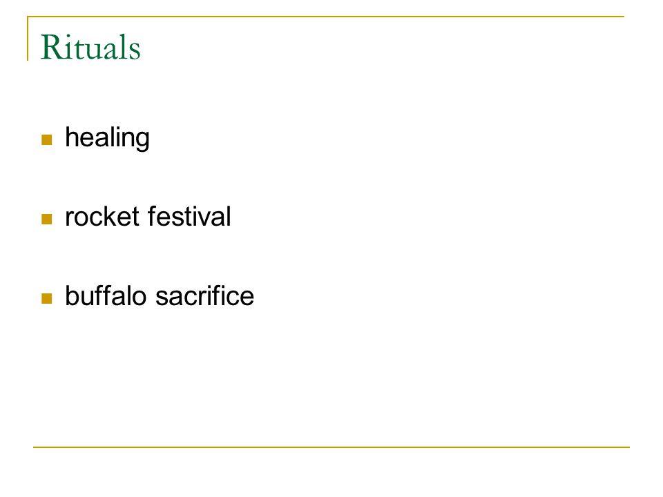 Rituals healing rocket festival buffalo sacrifice