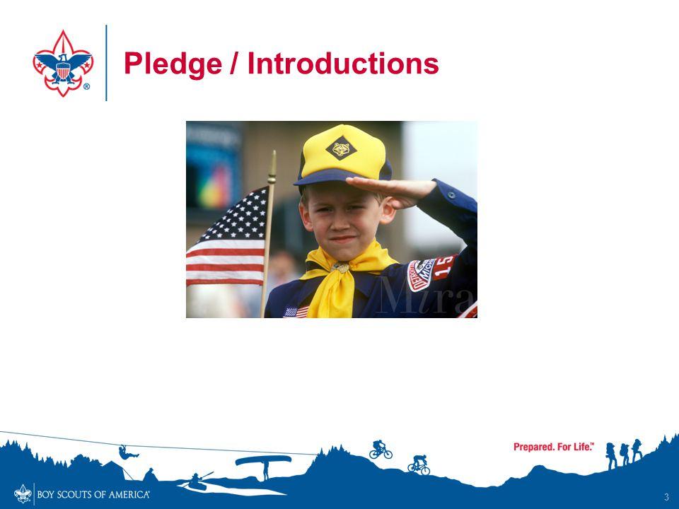 Pledge / Introductions 3