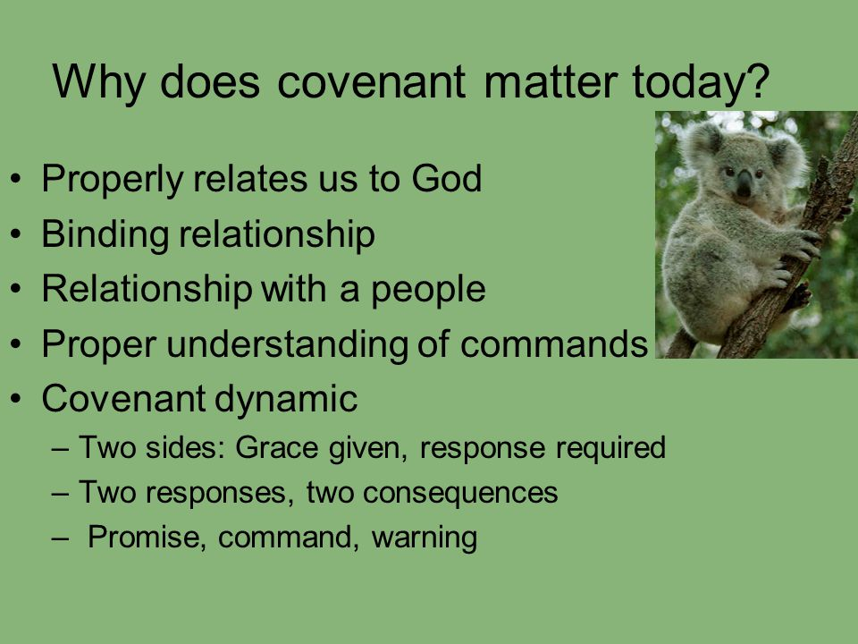 Why does covenant matter today? Properly relates us to God Binding relationship Relationship with a people Proper understanding of commands Covenant d