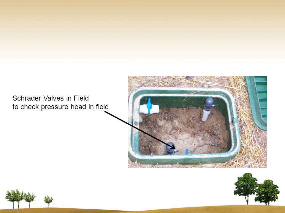 Schrader Valves in Field to check pressure head in field