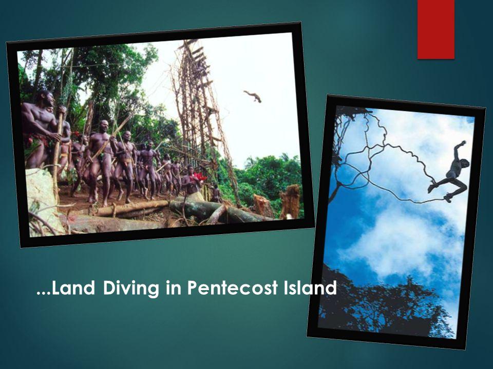 ...Land Diving in Pentecost Island