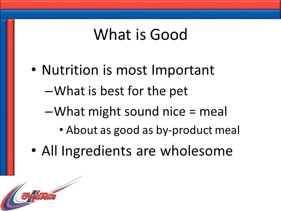 What is Good Nutrition is most Important – What is best for the pet – What might sound nice = meal About as good as by-product meal All Ingredients are wholesome