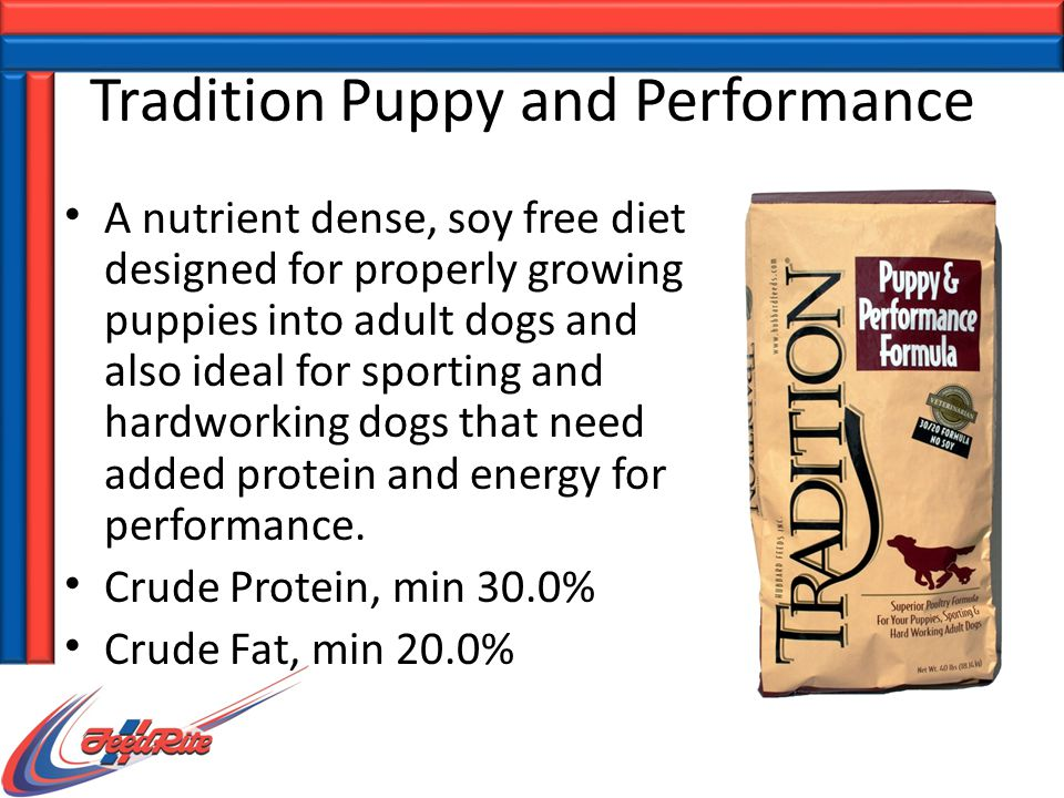 Tradition Puppy and Performance A nutrient dense, soy free diet designed for properly growing puppies into adult dogs and also ideal for sporting and hardworking dogs that need added protein and energy for performance.