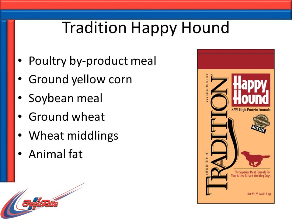 Tradition Happy Hound Poultry by-product meal Ground yellow corn Soybean meal Ground wheat Wheat middlings Animal fat