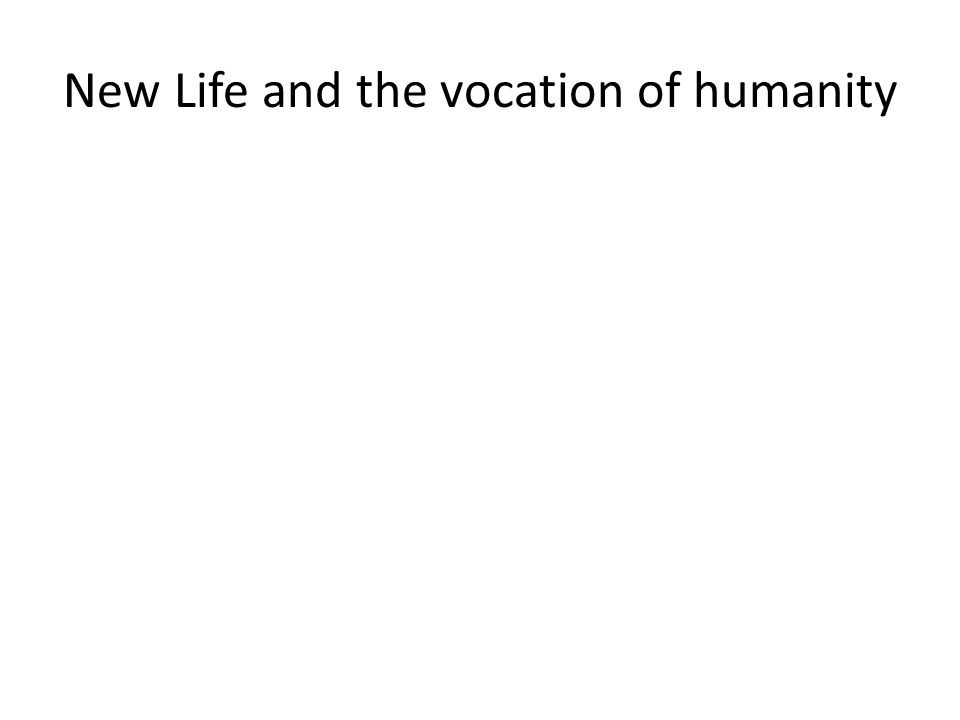 New Life and the vocation of humanity