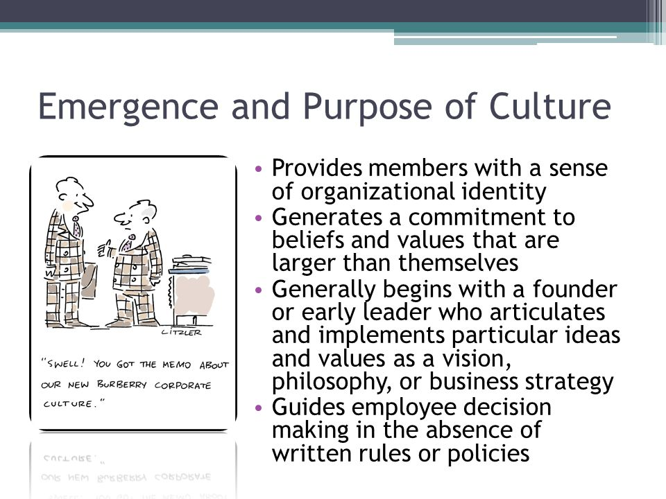 Emergence and Purpose of Culture Provides members with a sense of organizational identity Generates a commitment to beliefs and values that are larger than themselves Generally begins with a founder or early leader who articulates and implements particular ideas and values as a vision, philosophy, or business strategy Guides employee decision making in the absence of written rules or policies