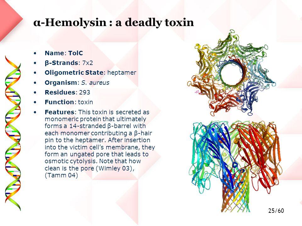 25/60 α-Hemolysin : a deadly toxin Name: TolC β-Strands: 7x2 Oligometric State: heptamer Organism: S.