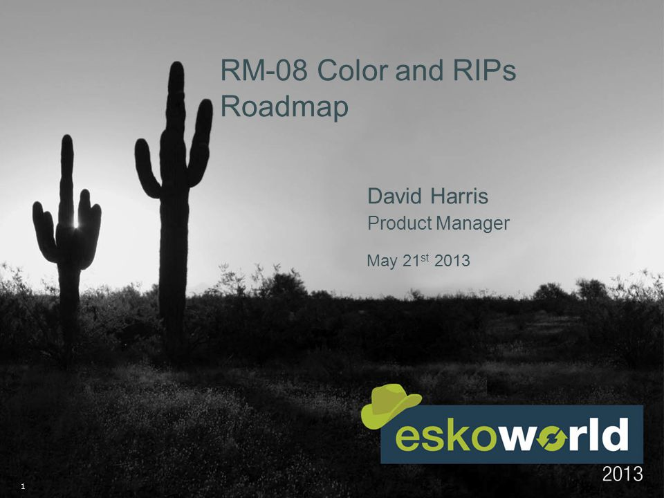 1 May 21 st 2013 RM-08 Color and RIPs Roadmap David Harris Product Manager