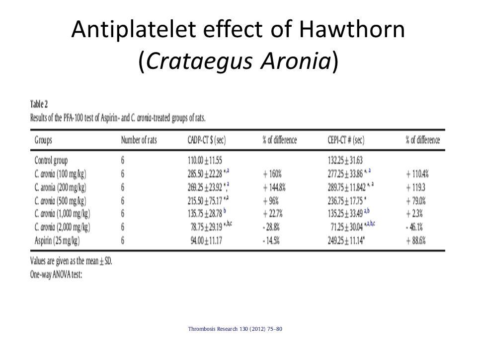 Antiplatelet effect of Hawthorn (Crataegus Aronia)