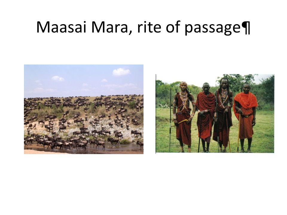 Maasai Mara, rite of passage¶