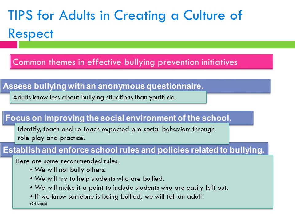 TIPS for Adults in Creating a Culture of Respect Identify, teach and re-teach expected pro-social behaviors through role play and practice. Here are s