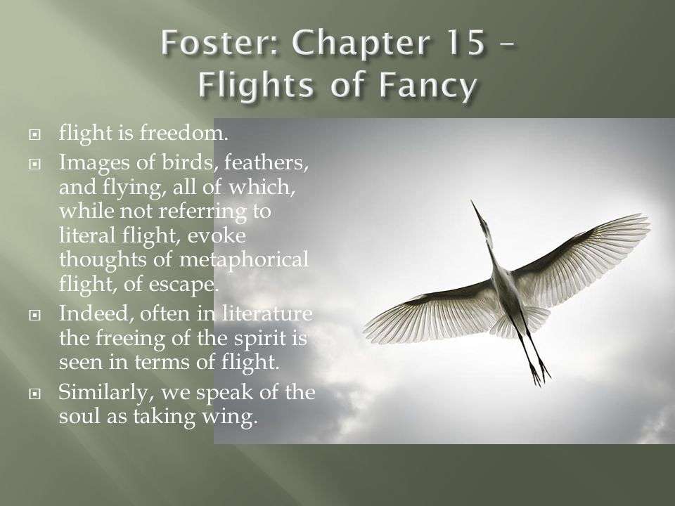  flight is freedom.  Images of birds, feathers, and flying, all of which, while not referring to literal flight, evoke thoughts of metaphorical flig