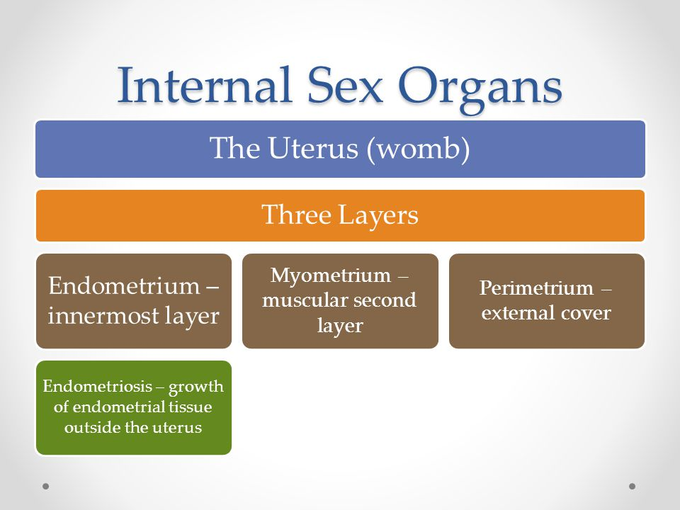 Internal Sex Organs The Uterus (womb) Three Layers Endometrium – innermost layer Endometriosis – growth of endometrial tissue outside the uterus Myometrium – muscular second layer Perimetrium – external cover