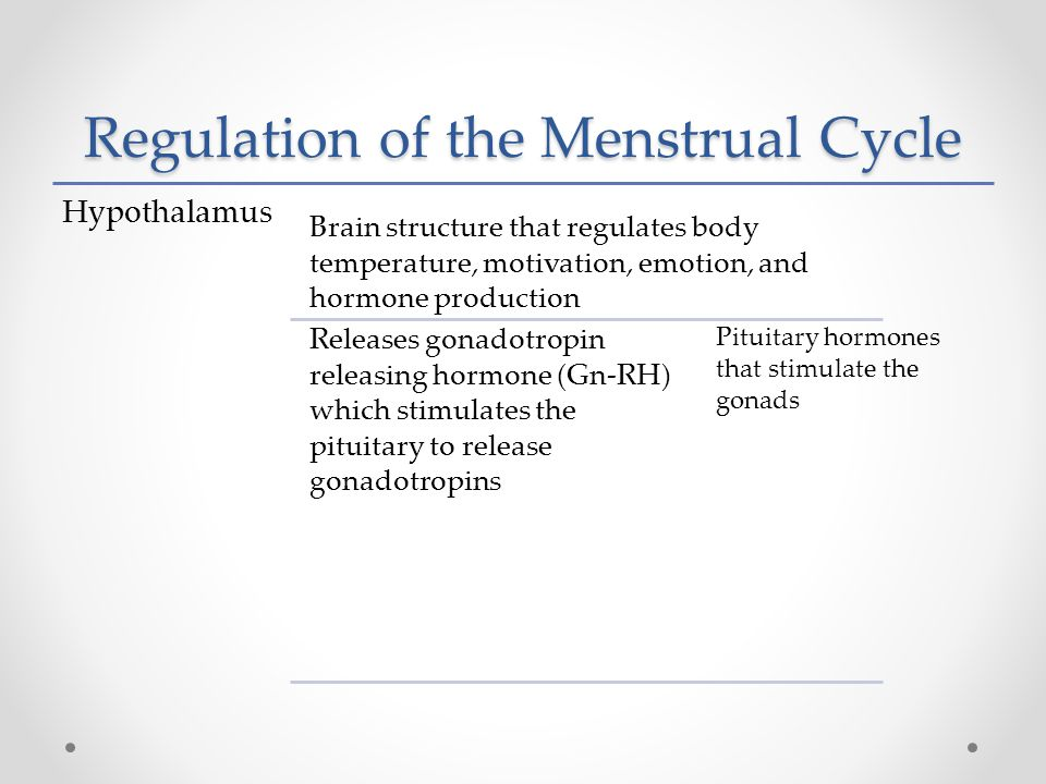 Regulation of the Menstrual Cycle Hypothalamus Brain structure that regulates body temperature, motivation, emotion, and hormone production Releases gonadotropin releasing hormone (Gn-RH) which stimulates the pituitary to release gonadotropins Pituitary hormones that stimulate the gonads