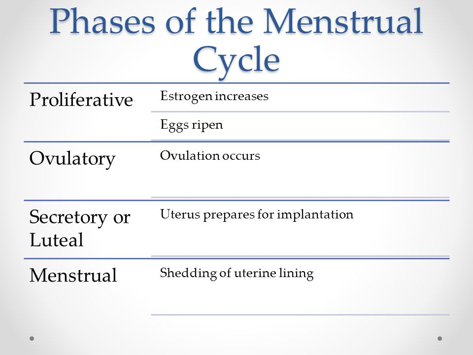 Phases of the Menstrual Cycle Proliferative Estrogen increases Eggs ripen Ovulatory Ovulation occurs Secretory or Luteal Uterus prepares for implantat