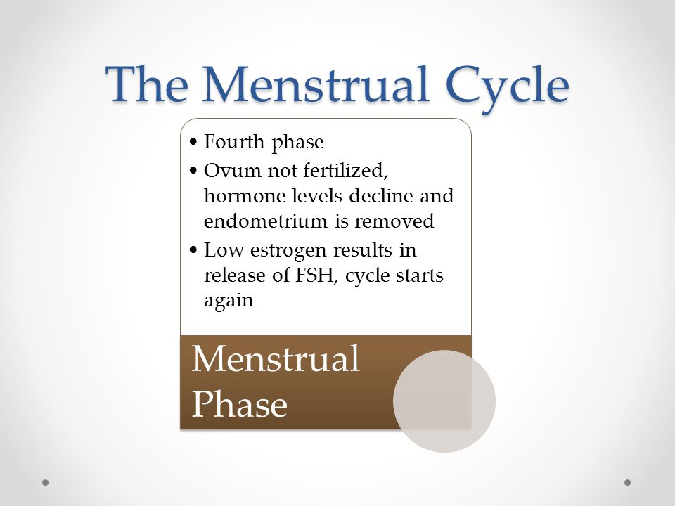 The Menstrual Cycle Fourth phase Ovum not fertilized, hormone levels decline and endometrium is removed Low estrogen results in release of FSH, cycle starts again Menstrual Phase