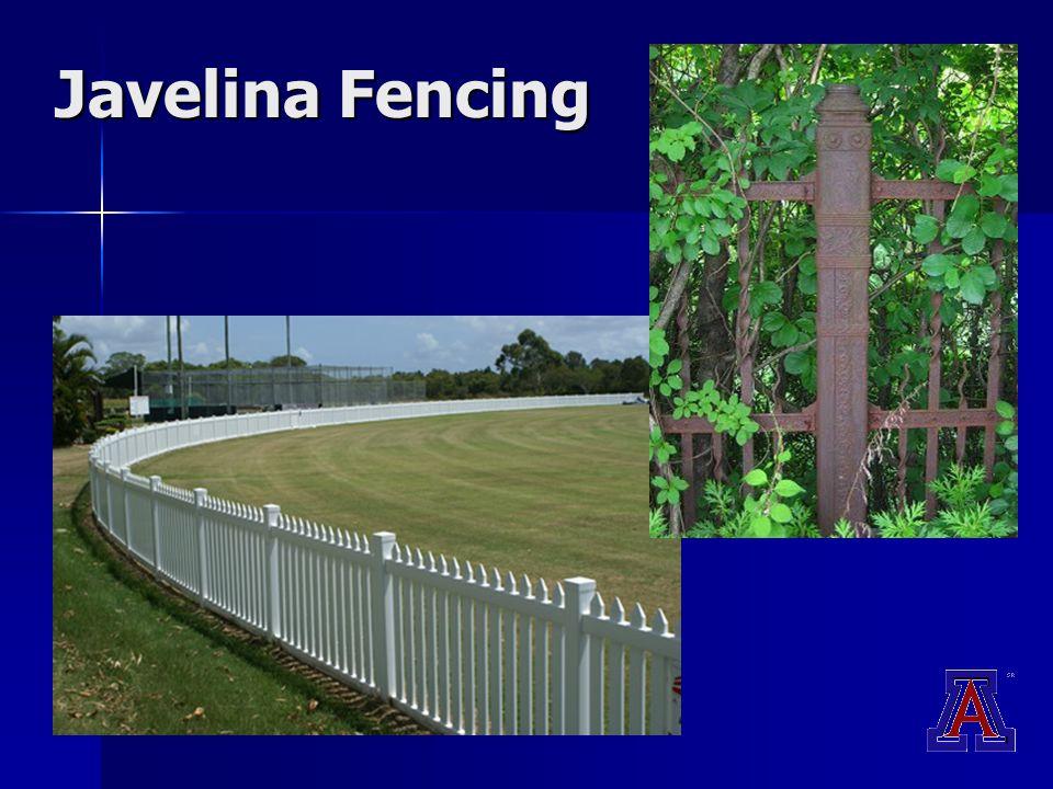 Javelina Fencing