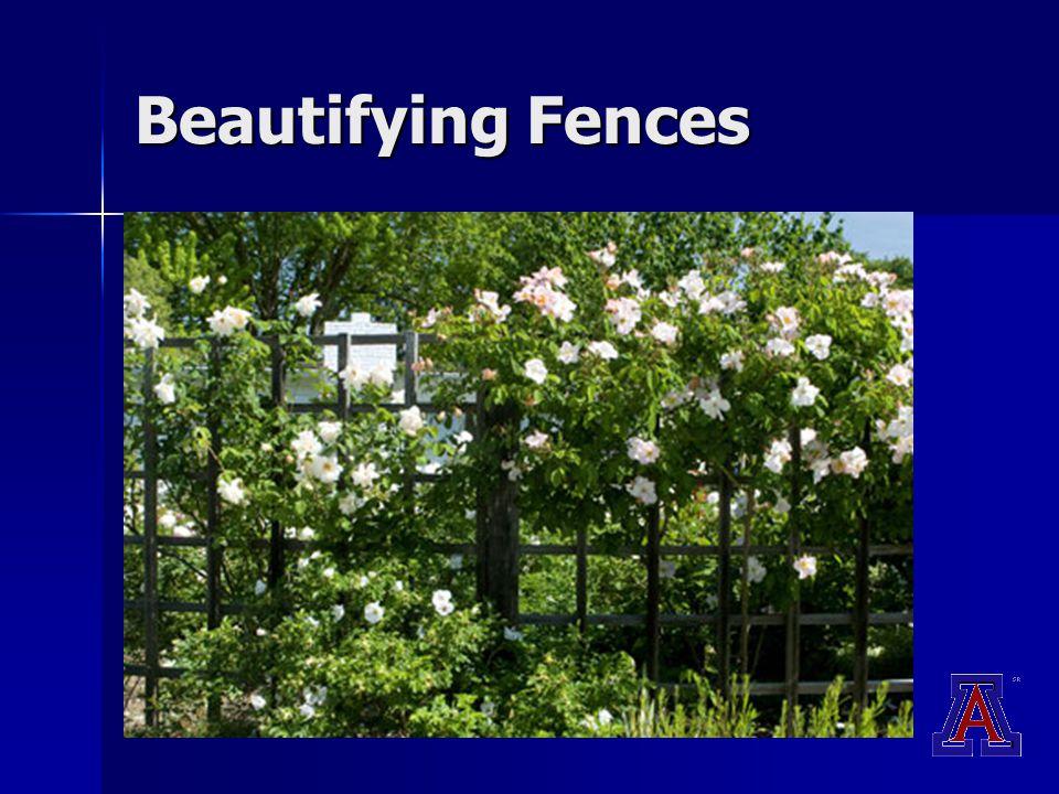 Beautifying Fences
