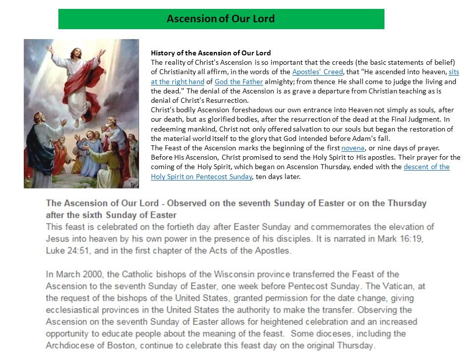 Ascension of Our Lord History of the Ascension of Our Lord The reality of Christ's Ascension is so important that the creeds (the basic statements of