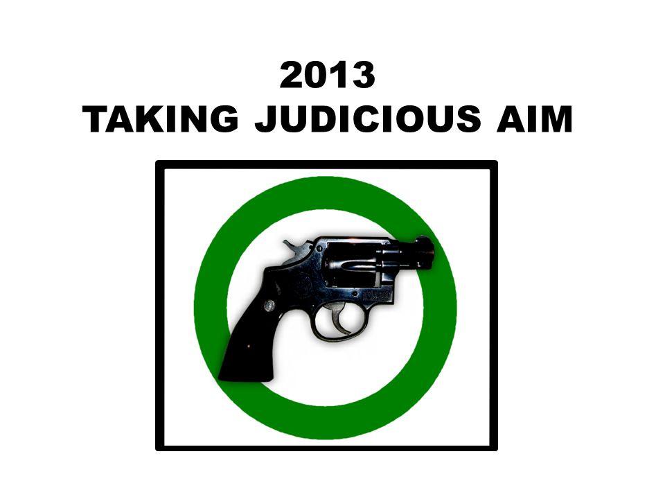 2013 TAKING JUDICIOUS AIM