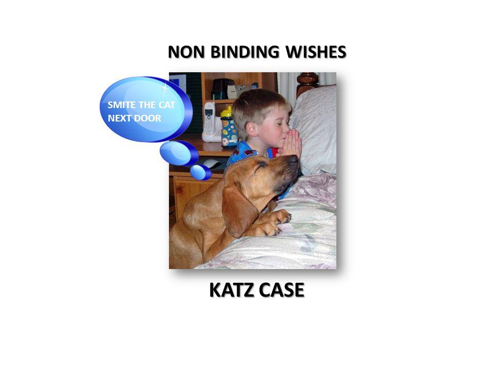 NON BINDING WISHES KATZ CASE SMITE THE CAT NEXT DOOR