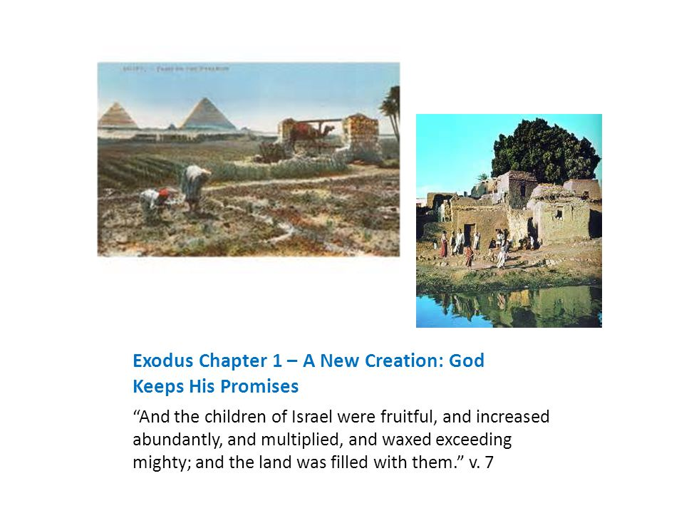Exodus Chapter 1 – A New Creation: God Keeps His Promises And the children of Israel were fruitful, and increased abundantly, and multiplied, and waxed exceeding mighty; and the land was filled with them. v.
