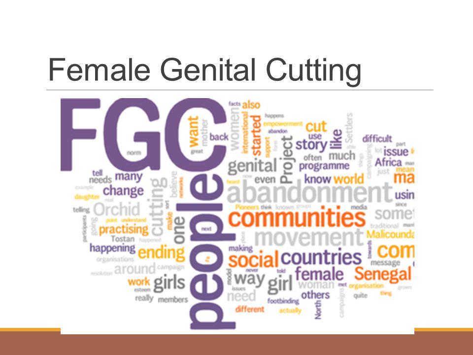 What is Female Genital Cutting.