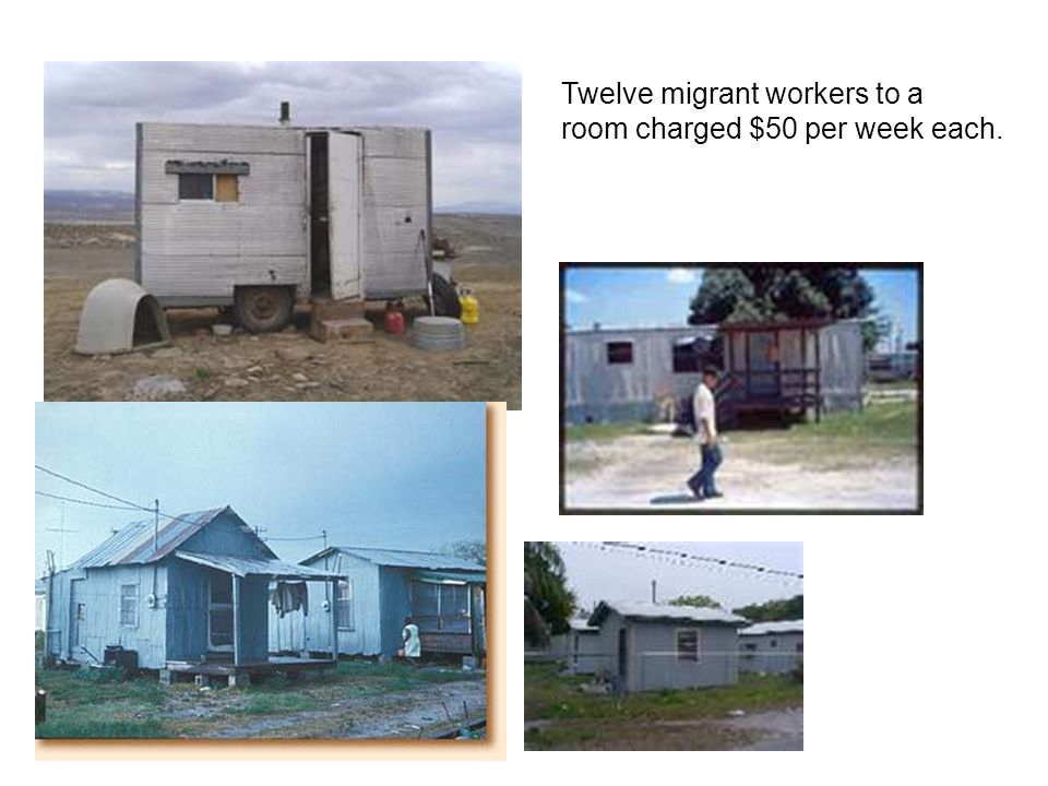 Twelve migrant workers to a room charged $50 per week each.