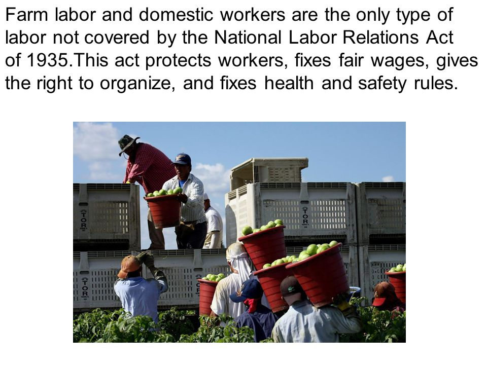 Farm labor and domestic workers are the only type of labor not covered by the National Labor Relations Act of 1935.This act protects workers, fixes fa
