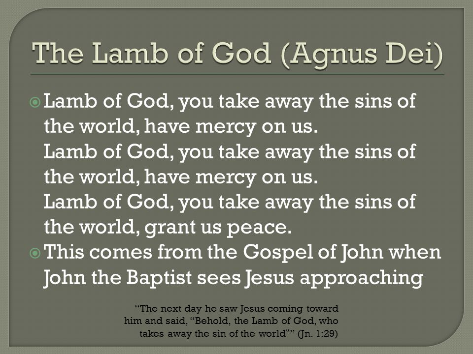  Lamb of God, you take away the sins of the world, have mercy on us. Lamb of God, you take away the sins of the world, have mercy on us. Lamb of God,