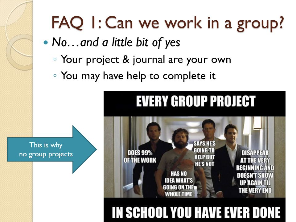 FAQ 1: Can we work in a group.