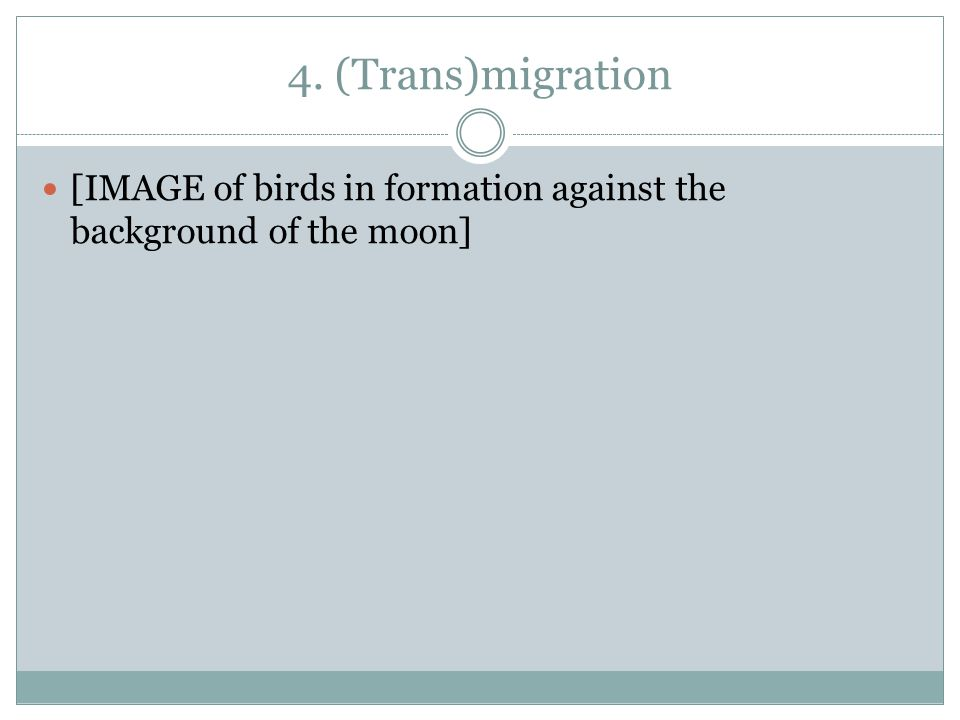 4. (Trans)migration [IMAGE of birds in formation against the background of the moon]