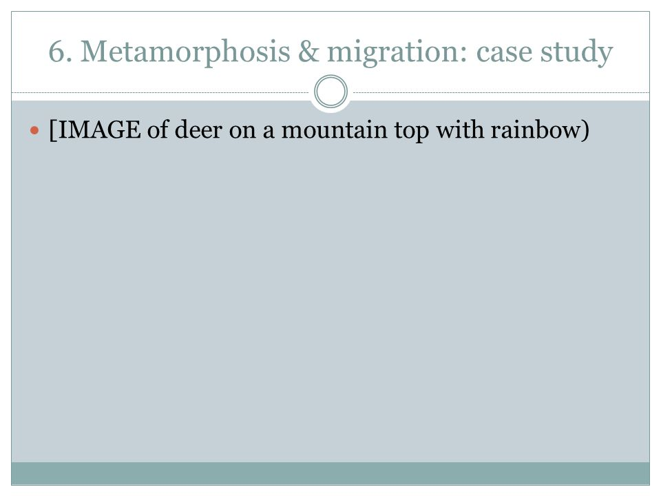 6. Metamorphosis & migration: case study [IMAGE of deer on a mountain top with rainbow)
