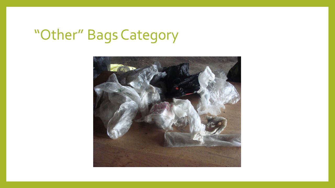 Other Bags Category