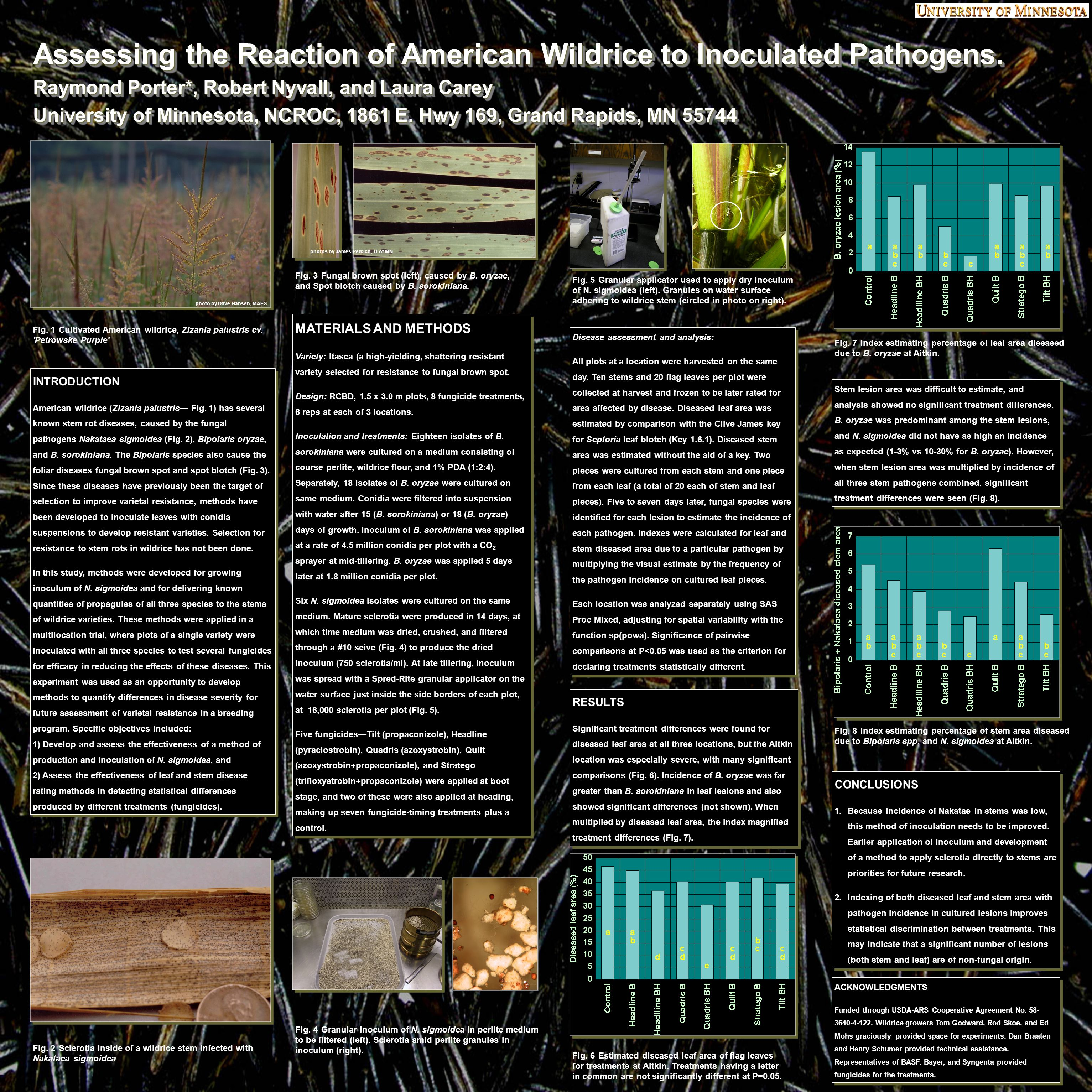 Assessing the Reaction of American Wildrice to Inoculated Pathogens.